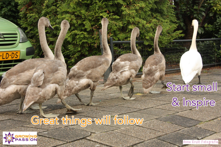 Start small and inspire - Great things will follow